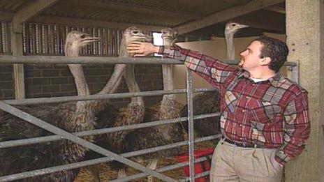 Martin Evans at his ostrich farm