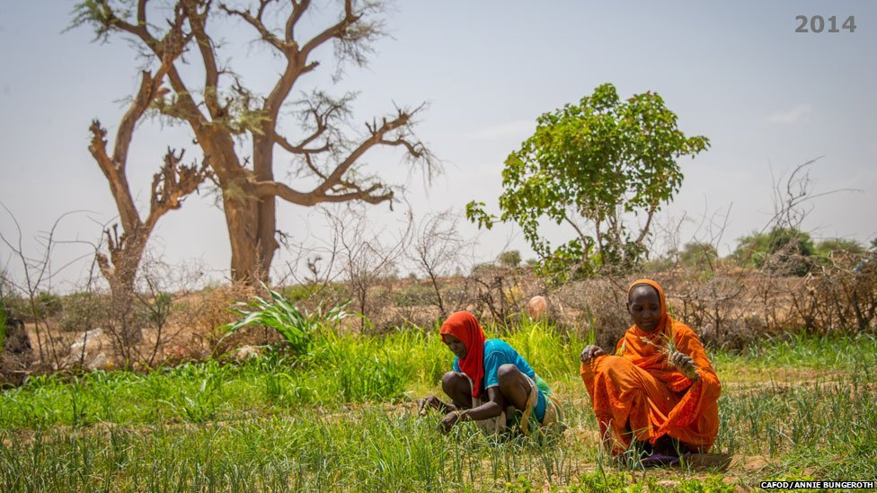 Members of a farming co-operative supported by Cafod partner Norwegian Church Aid working on land near Hamadia camp, Darfur, Sudan - 2014