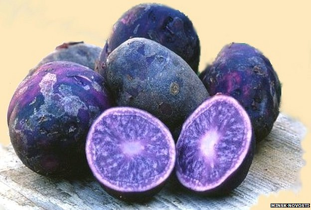 """Blue potatoes"""