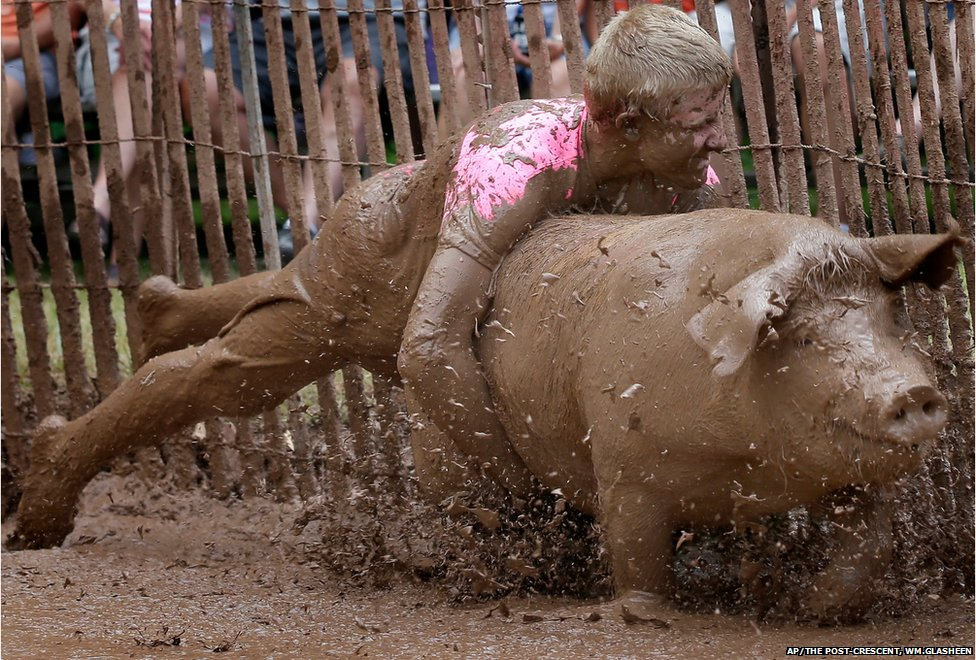Wyatt Van Handel makes a diving grab during the Pig Rassle event at The 44th Annual St Patrick Catholic Church Roundup in Stephensville, Wisconsin