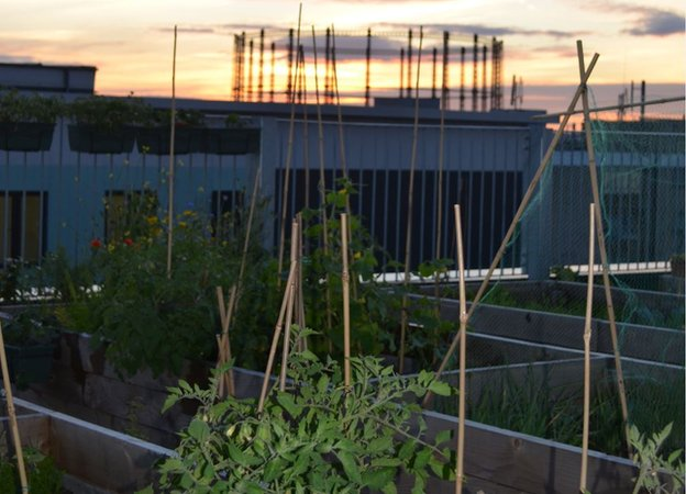 Silk Gardens Rooftop,