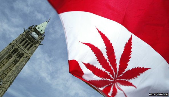 Canadian flag that has a marijuana leaf instead of a maple leaf