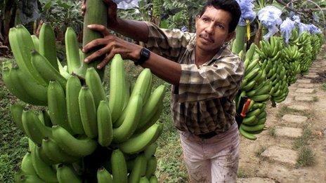 banana firm chiquita spurns 611m brazil takeover bid. Black Bedroom Furniture Sets. Home Design Ideas