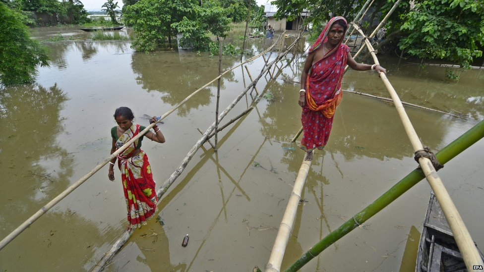 Villagers in Assam in India cross the flooded waters by walking on bamboo sticks, 16 August 2014.
