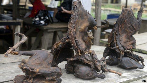 Dried bush meat, at the Ajegunle-Ikorodu market in Lagos, Nigeria (13 August 2014)