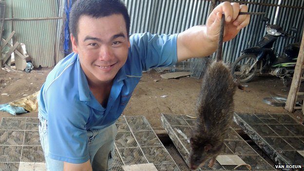Photo of Vietnamese rat trader showing off his stock