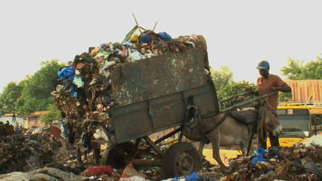 Donkeys tipping waste in Mali