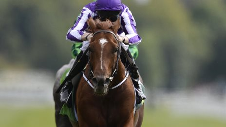 Australia wins the Juddmonte at York