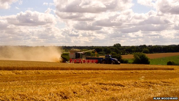 Crop harvest near Milton, Banbury