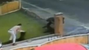 CCTV footage of a lawn theft