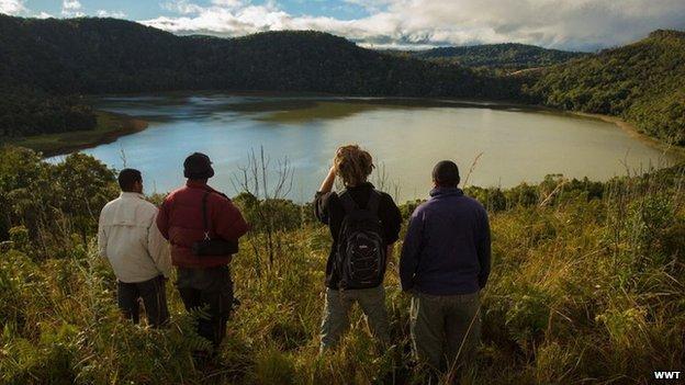 Wetland in Madagascar, home of the Madagascar pochard