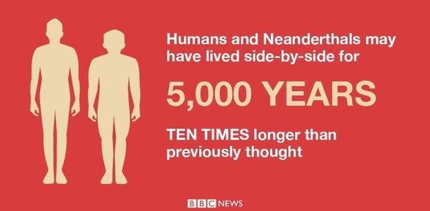 Neanderthals graphic