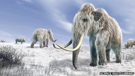 Computer artwork of woolly mammoths