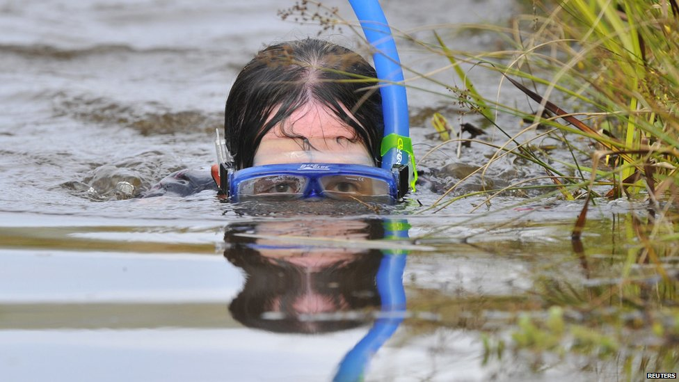 Llanwrtyd Wells bog snorkelling championships 2014 - woman competing