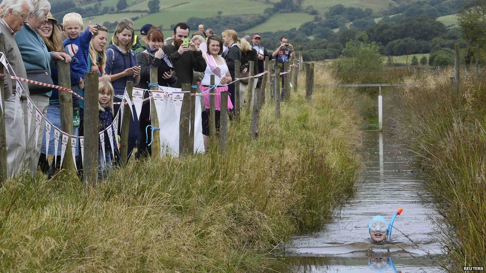 Llanwrtyd Wells bog snorkelling championships 2014 - crowd watches a competitor
