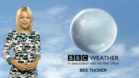 Bee Tucker
