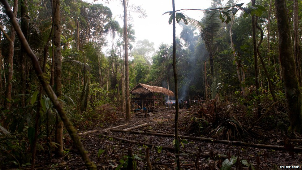 Camp built by illegal loggers in the Peruvian jungle, on the shores of the of the Esperanza river on 3 April 2013.