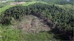 April 2005 file picture of of the Anapu region