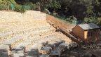 Trebah Garden amphitheatre