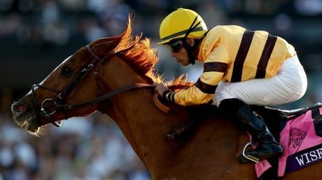 Wise Dan winning at the 2013 Breeders' Cup meeting