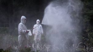 Workers spray pesticide in Yoyogi Park on 28 August, 2014 in Tokyo, Japan