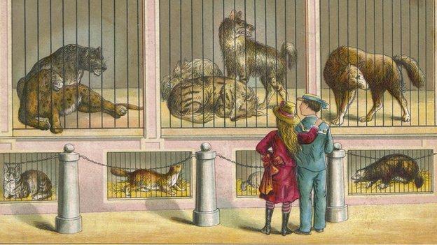 London Zoo illustration