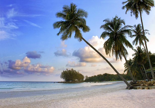Why do people associate the Caribbean with paradise?...