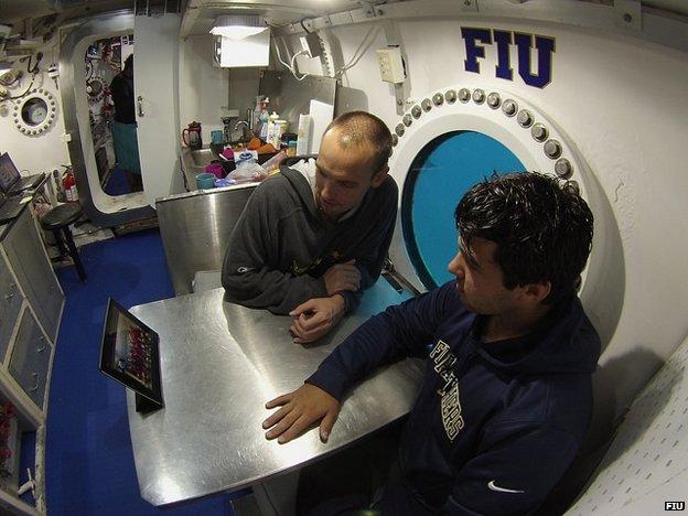 Aquanauts looking at tablet - provided by Aquarius Reef Base at the Florida International University