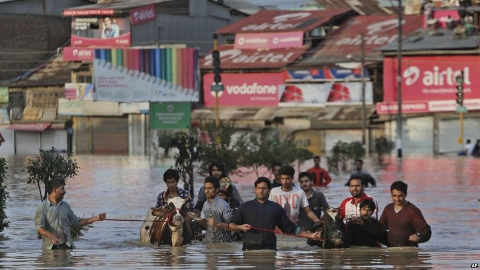 Kashmiri men move with their cattle from their flooded neighbourhood in Srinagar, India, Sept 7 2014