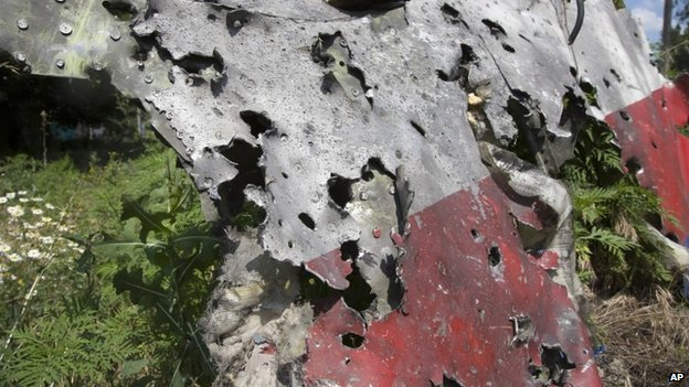A piece of the crashed Malaysia Airlines plane in eastern Ukraine - 23 July 2014