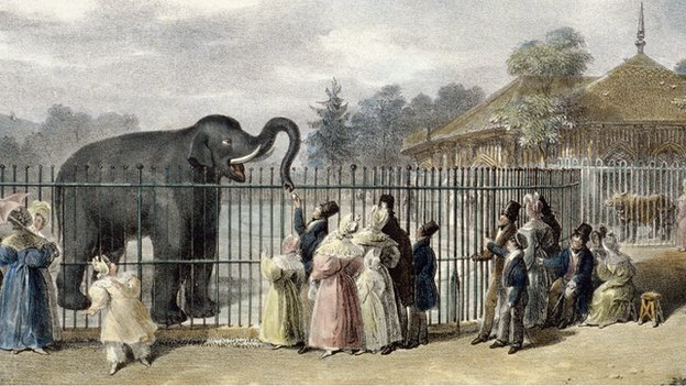Victorian crowds view an elephant at London Zoo