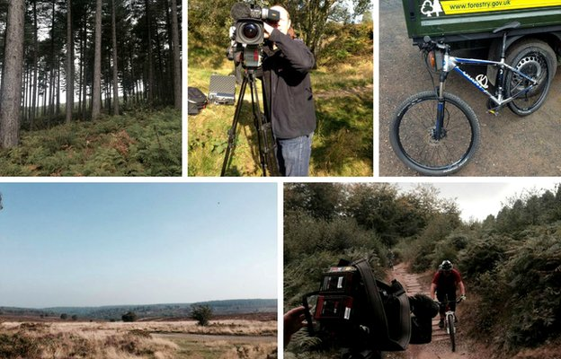 Rebecca Wood filming on Cannock Chase