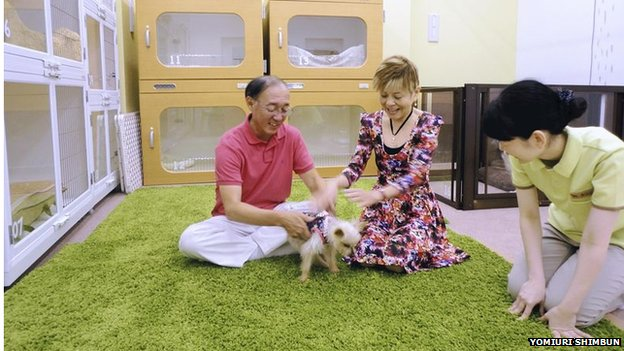 Couple playing with their dog in a pets centre in Japan