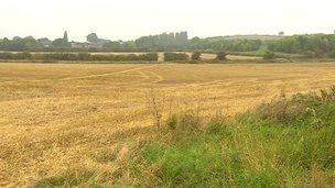 Farm Field in Stapleton