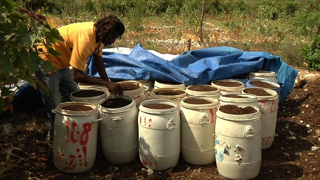 Human waste mixed with organic material from sugar cane
