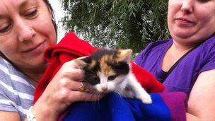 Lisa Merry and Sam Warrington with kitten