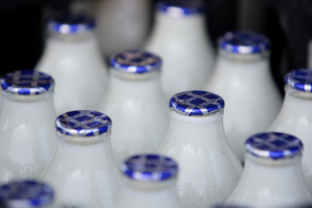 Nostalgia for an old-fashioned milk bottle | eklectica.in