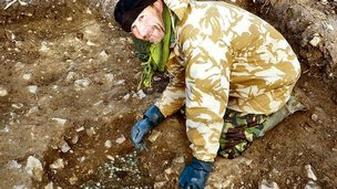 Roman coins discovered in Devon