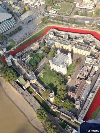 Aerial shot of the ceramic poppies at the Tower of London