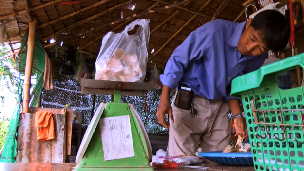 Than Wai Aung weighs his mushroom before selling them