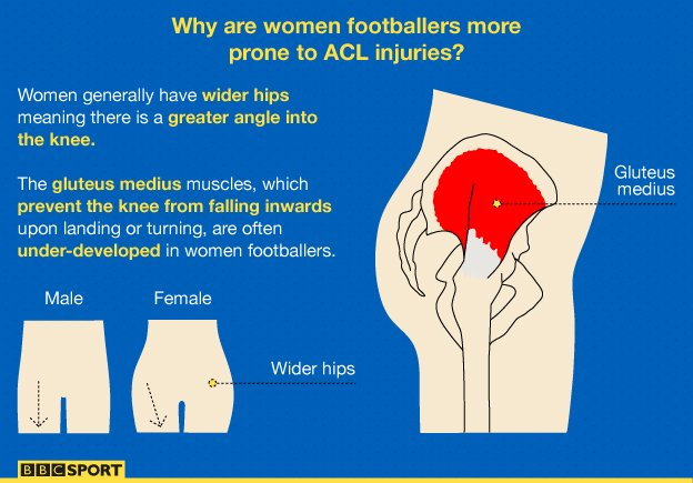 Dissertation On Female Knee Injuries