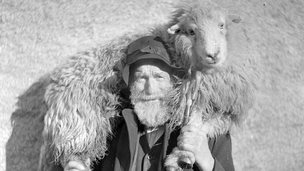 Man with a sheep