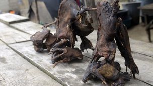 Dried bushmeat, at a market in Lagos.