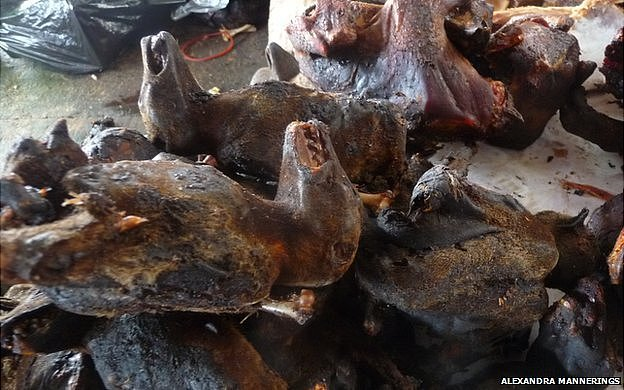 Smoked bat carcasses for sale in Ghana