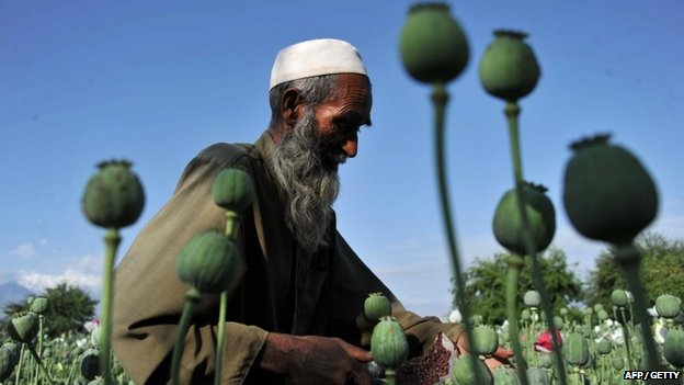 US $7bn fails to stop opium growth...