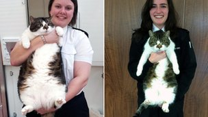 Mr Pickles before and after
