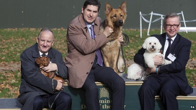 Westminster dog of the year winners