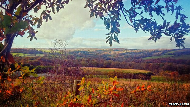 County Durham in autumn