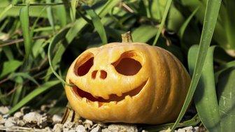 Modern Halloween pumpkin
