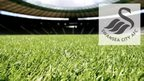 Swansea 'in talks with US investor'